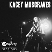 Spotify Sessions - Live From Bonnaroo 2013