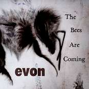 The Bees Are Coming