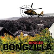 Bongzilla: Apogee
