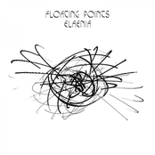 Floating Points: Elaenia