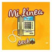Mi Linea