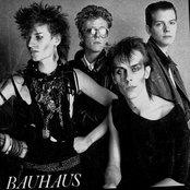 Bauhaus 39e809b325b042ec92e2a85ce66fb417