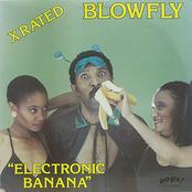 Electronic Banana