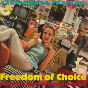 Freedom Of Choice: Yesterday's New Wave Hits as Performed by Today's Stars