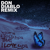 What If I Told You That I Love You (Don Diablo Remix)
