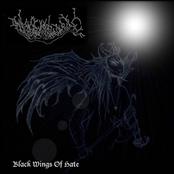 Black wings of Hate