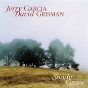 Shady Grove cover art