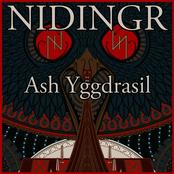 Ash Yggdrasil