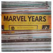 Marvel Years: Hidden Groove