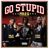 Go Stupid (feat. NLE Choppa & Mike WiLL Made-It)