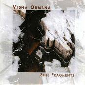 Still Fragments