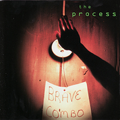 Brave Combo: The Process