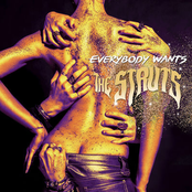 The Struts: Everybody Wants