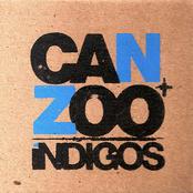 Can+Zoo íNDIGOS