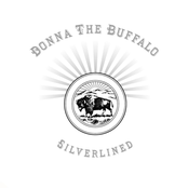 Donna the Buffalo: Silverlined