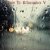 A Pain to Remember V