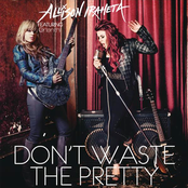 Don't Waste the Pretty - Single