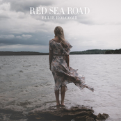 Ellie Holcomb: Red Sea Road
