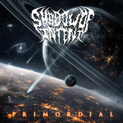 Shadow of Intent: Primordial