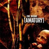 [Amatory] - Две Жизни