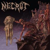 Necrot: Mortal