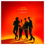 The Band Camino: tryhard