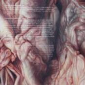marbled skin