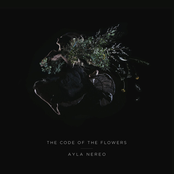 Ayla Nereo: The Code of the Flowers