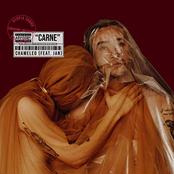 Carne (feat. JAN) - Single