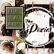 Where Is My Mind? (A Tribute To The Pixies)