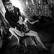 Morbid Fate (EP)