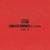 Endless Summer Freestyle (feat. YG)