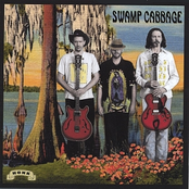 Tallahassee by Swamp Cabbage