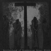 Brotherhood Of Drakkonian Royal Blood (Split)