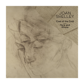 Joan Shelley: Cost of the Cold b/w Here and Whole
