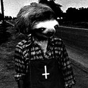 mauled by sloths
