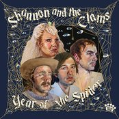 Shannon And The Clams - Year Of The Spider Artwork
