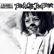 Black Cat John Brown