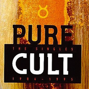 The Cult: Pure Cult