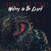Wolves in the Dark - Single