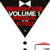 Brasshouse, Volume 1: Survival of the Flyest