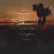 Goldroom: Till Sunrise (feat. Mammals)