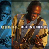 Witness To The Blues