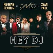 Hey DJ - Single