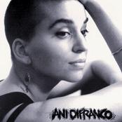 Ani Difranco: Ani DiFranco