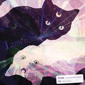 Lunensis