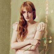 Avatar für Florence + the Machine