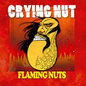 Flaming Nuts