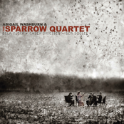 Abigail Washburn: Abigail Washburn & The Sparrow Quartet