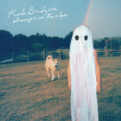 Phoebe Bridgers: Stranger in the Alps (Deluxe Edition)